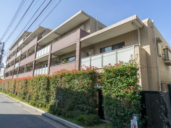 メゾンカルム西新宿 313号室