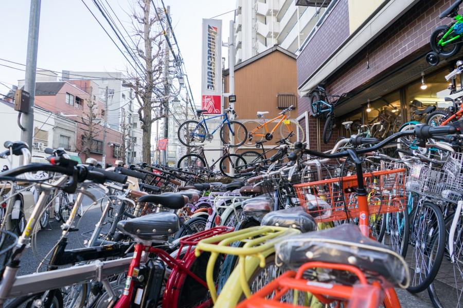 t_160208_seocycle-23