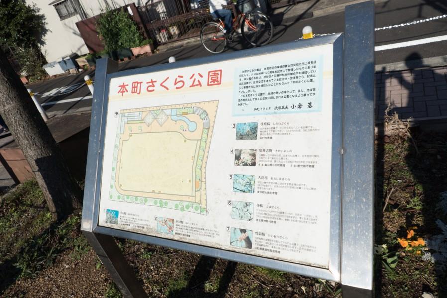 t_hanamispot_20160316-9